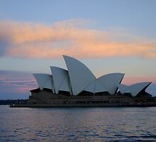 sunset 1 january --Sydney by tmfijala