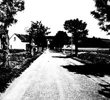The road not taken... by Christine Oakley