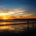Coronado Sunset by Michael Chong