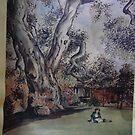 Henry Morse Stephens Oak, Berkeley by rferrisx