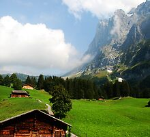 September up in the Swiss Alps by Michael Brewer