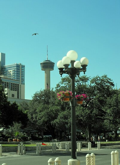 View from Alamo Plaza by Susan Russell