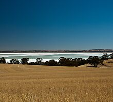 Lake Dumbleyung by Juanita Marchesani
