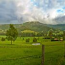 Road to Kangaroo Valley. by Les Boucher