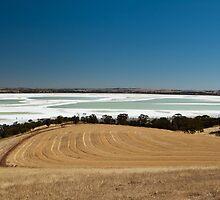 Lake Dumbleyung, Western Australia by Juanita Marchesani