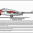 De Havilland Vampire F3 Profile by coldwarwarrior