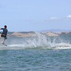 Flying across the water by Kim Edmonds