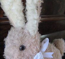 67 Year Old Toy Bunny Rabbit. by Mywildscapepics