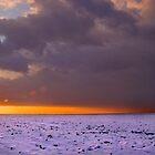 Last Light by Geoff Carpenter