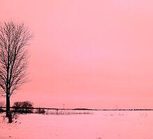 The Loner ! by Elfriede Fulda