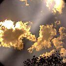 Sky is earth by abigirl