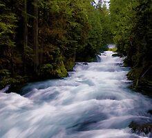 McKenzie River below Sahalie Falls by Allan  Erickson