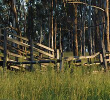 Peaceful Place - NSW by CasPhotography