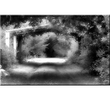 Into the Light Photographic Print