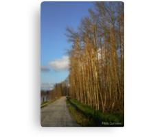River walk 2 Canvas Print
