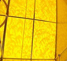 mood enhancing awning (view large) by carol selchert
