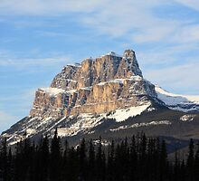 Castle Mountain by Alyce Taylor