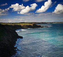 Windswept Coast - Phillip Island, Australia by fonghc
