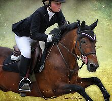 Dorset Hunter/Jumper: Super Sonic by isabelleann