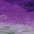 Purple Skies.... by wigs