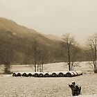 Snow Storm in Poor Valley (sepia) by Linda Costello Hinchey