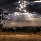Country glow by DaveBassett