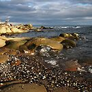 sandstone shore by TerrillWelch