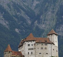 Castle in Litchenstien by gzed