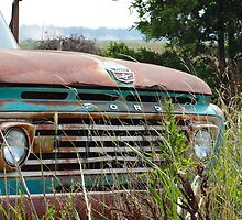 Forgotten Relic by chevelle68