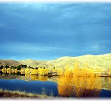 Colours of New Zealand by osedgman