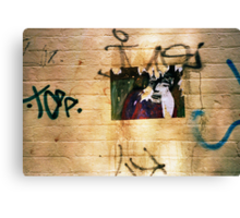 random street art Canvas Print