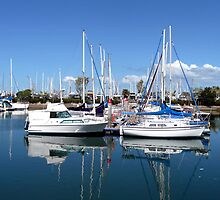 Manly marina by Margaret  Hyde