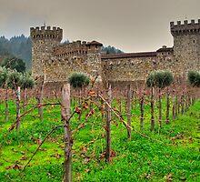 castello di vino by Bruce  Dickson