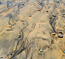 Ink-stained Beach by Terry Watts