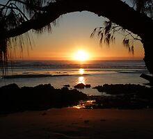Moonee winter sunrise by Sue Wetherell