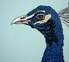 As Proud As A Peacock by Adam Regester