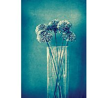 Monochrome flowers and vase Photographic Print
