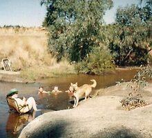 Paddling in Hughes Creek  by adgray