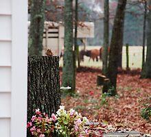 Life on the Farm by Lyccid