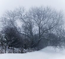 Deep Midwinter by CJTill