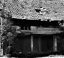 Derelict Old Barn, Guist,Norfolk by johnny2sheds