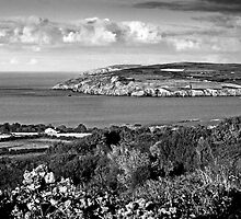 Overlooking Fishguard in Wales-Monochrome by johnny2sheds