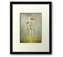 Daisy duo Framed Print
