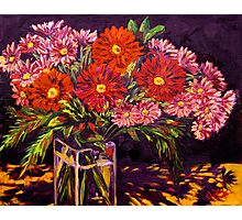 Mixed Daisies in a Vase Photographic Print