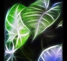 Styled Leaves 1 Color Glow by Christopher Johnson