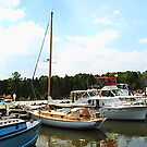Line of Docked Boats, Tuckerton Seaport, NJ by Susan Savad
