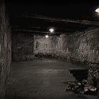 """Gas Chamber"". Auschwitz, Poland. by jwhimages"