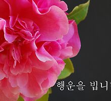 Korean Happy Birthday Camellia by myslewis