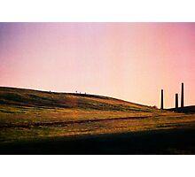 Sydney Park St Peters #1 Photographic Print