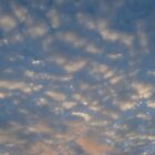 sunset sky,looks like marshmellows  by Anne koufos